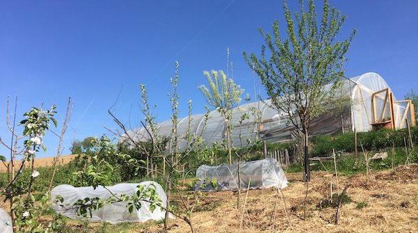 Découvrez la permaculture Rhone à La Source dorée